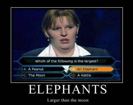 Giant elephants